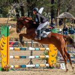 Zelda,-Fourways-Riding-Centre_SM11724